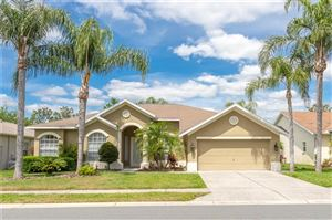 Main image for 12213 ROSELAND DRIVE, NEW PORT RICHEY,FL34654. Photo 1 of 41