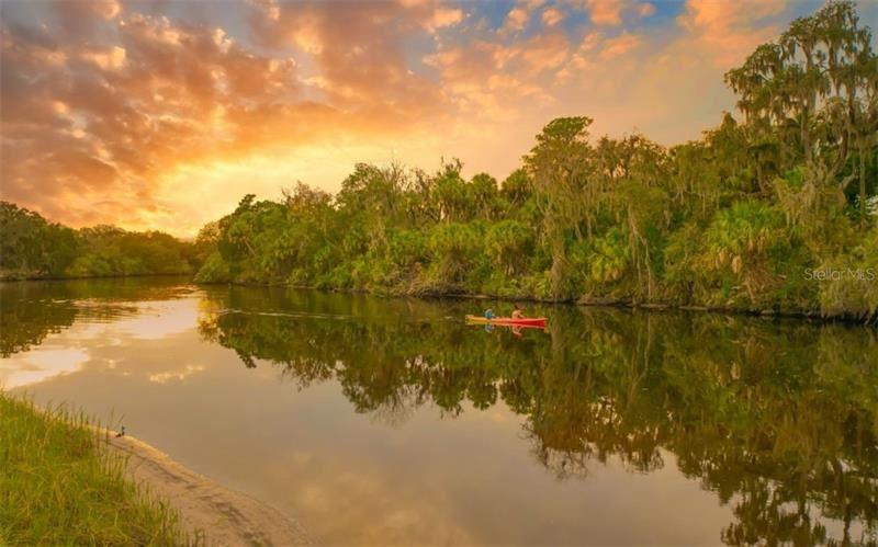 Photo of 14913 BARROWS BLUFF TERRACE, BRADENTON, FL 34212 (MLS # A4487745)