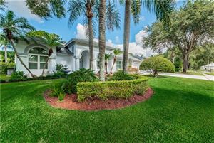 Photo of 4308 ENFIELD COURT, PALM HARBOR, FL 34685 (MLS # U8051748)