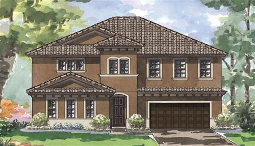 Main image for 11474 RANCHERS GAP DRIVE, ODESSA,FL33556. Photo 1 of 2
