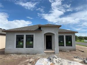 Photo of 12401 STREAMBED DRIVE, RIVERVIEW, FL 33579 (MLS # T3187755)