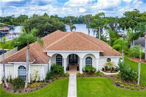 Photo of 15006 MAURINE COVE LANE, ODESSA, FL 33556 (MLS # T3198763)