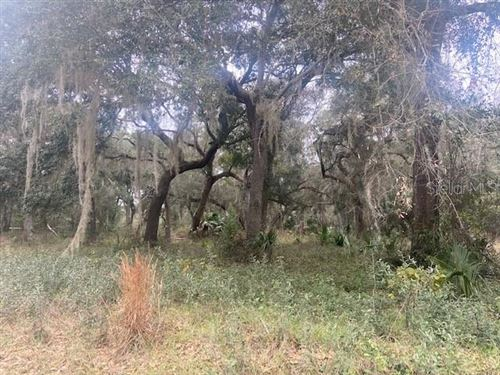 Photo of DILLARD ROAD, ASTOR, FL 32102 (MLS # V4911769)