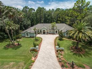 Main image for 10532 ALICO PASS, NEW PORT RICHEY,FL34655. Photo 1 of 44
