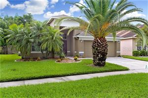 Main image for 4620 MAPLETREE LOOP, WESLEY CHAPEL,FL33544. Photo 1 of 30