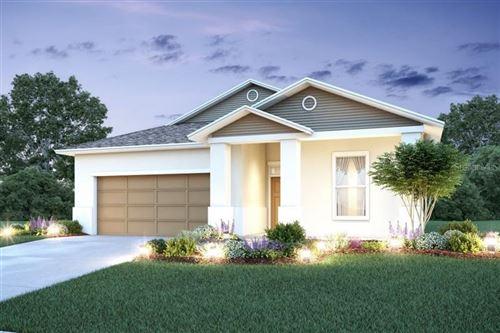 Photo of 5095 LITTLE STREAM LANE, WESLEY CHAPEL, FL 33545 (MLS # T3273781)