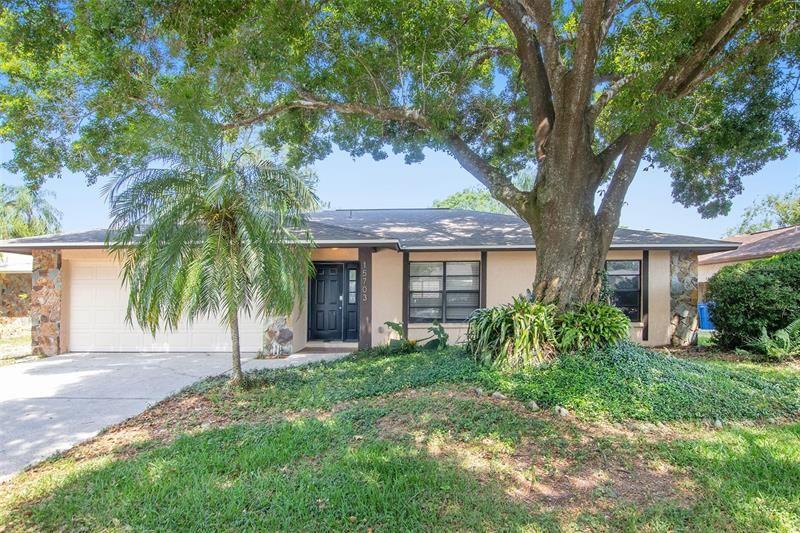 15703 SQUIRREL TREE PLACE, Tampa, FL 33624 - MLS#: O5942781