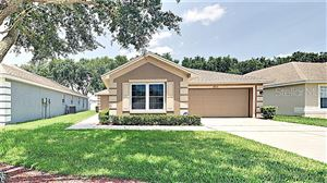Photo of 6863 SHADOWCAST LANE, LAKELAND, FL 33813 (MLS # T3182782)