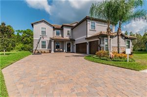 Photo of 19119 SHALOTT COURT, LAND O LAKES, FL 34638 (MLS # U8060792)