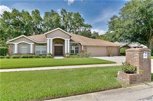 Main image for 909 BELLE TIMBRE AVENUE, BRANDON, FL  33511. Photo 1 of 39