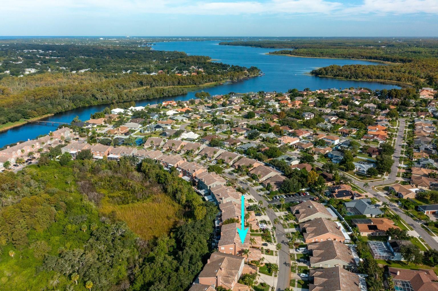 1692 ARABIAN LANE, Palm Harbor, FL 34685 - #: U8140808