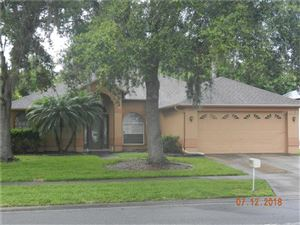 Photo of 10012 COLONNADE DRIVE, TAMPA, FL 33647 (MLS # T3118810)