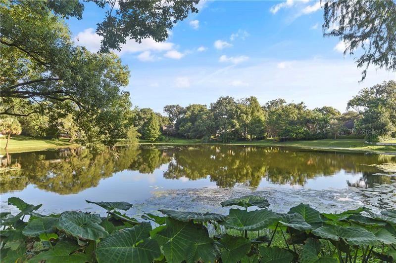 1113 VIA DEL MAR, Winter Park, FL 32789 - #: O5901816