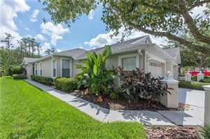 Photo of 3424 CHAPEL CREEK CIRCLE, WESLEY CHAPEL, FL 33544 (MLS # T3119822)