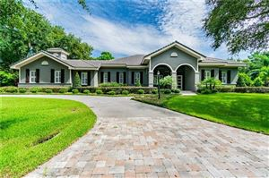 Photo of 17110 JOURNEYS END DRIVE, ODESSA, FL 33556 (MLS # T3187822)