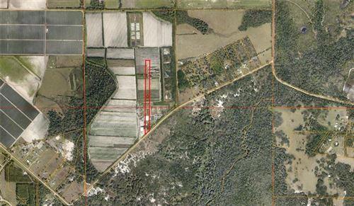 Photo of 4770 SAFFOLD ROAD, WIMAUMA, FL 33598 (MLS # T3212823)