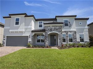 Photo of 669 CATERPILLAR RUN, WINTER GARDEN, FL 34787 (MLS # O5786825)