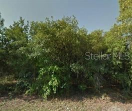 Main image for 12955 LADD AVENUE, NEW PORT RICHEY,FL34654. Photo 1 of 1