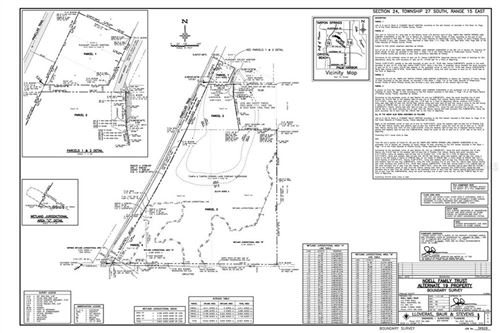 Photo of S PINELLAS AVENUE, PALM HARBOR, FL 34683 (MLS # U8088843)
