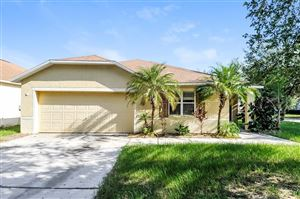 Main image for 13518 RED EAR COURT, RIVERVIEW, FL  33569. Photo 1 of 24
