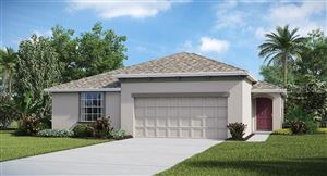 Main image for 17143 SUNSHINE MIMOSA STREET, WIMAUMA, FL  33598. Photo 1 of 16