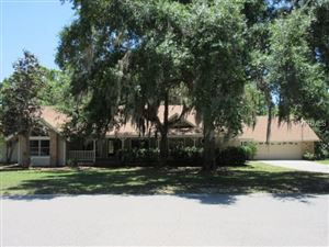 Photo of 1055 RIVERSIDE RIDGE ROAD, TARPON SPRINGS, FL 34688 (MLS # U8042858)