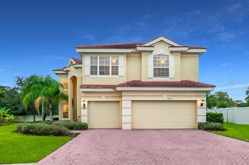 12831 DARBY RIDGE DRIVE, Tampa, FL 33624 - #: T3282864