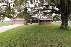 Photo of 2811 MAX SMITH ROAD, LUTZ, FL 33559 (MLS # U8055867)