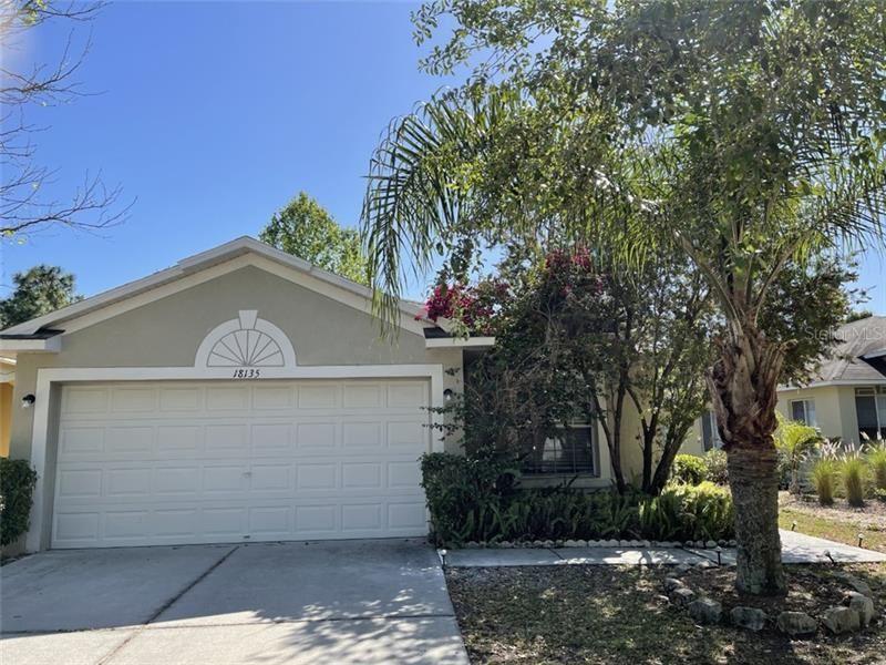 18135 PORTSIDE STREET, Tampa, FL 33647 - #: T3299869