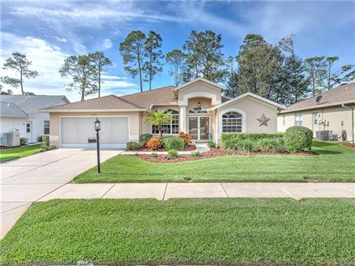 Photo of 18439 WATER LILY LANE, HUDSON, FL 34667 (MLS # T3221875)