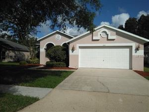 Photo of 1443 BAYTHORN DRIVE, WESLEY CHAPEL, FL 33543 (MLS # T3131876)
