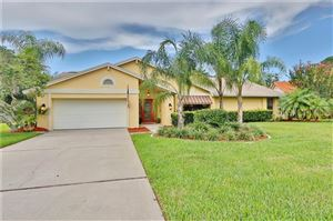 Main image for 6218 IROQUOIS COURT, ODESSA, FL  33556. Photo 1 of 33