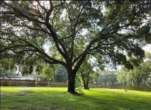 Photo of 10160 HARNEY ROAD, THONOTOSASSA, FL 33592 (MLS # U8139882)