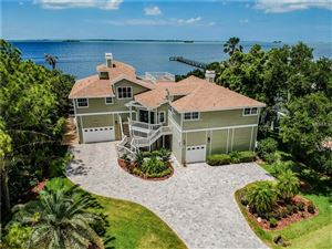 Photo of 978 POINT SEASIDE DRIVE, CRYSTAL BEACH, FL 34681 (MLS # U8043889)