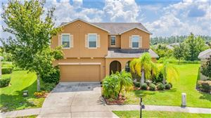 Photo of 5341 DITTANY COURT, LAND O LAKES, FL 34639 (MLS # W7815893)
