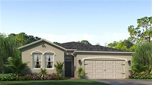 Photo of 1060 MANZANAR PLACE, WESLEY CHAPEL, FL 33543 (MLS # T3175895)