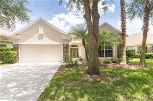 Photo of 17917 TIMBER VIEW STREET, TAMPA, FL 33647 (MLS # T3182895)