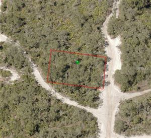 Photo of NO NAME, DELAND, FL 32720 (MLS # V4905900)