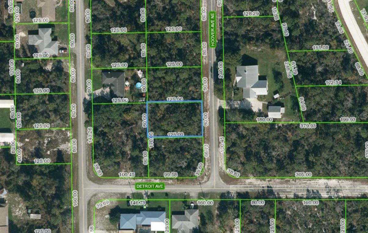 Photo of 459 HOOVER AVENUE NE, LAKE PLACID, FL 33852 (MLS # D6119900)