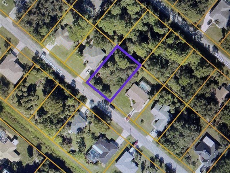 Photo of MUGLONE LANE, NORTH PORT, FL 34286 (MLS # N6114905)