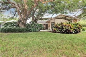 Photo of 2007 MAGDALENE MANOR DRIVE, TAMPA, FL 33613 (MLS # T3199910)