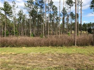 Main image for 17712 COUNTRY SQUIRE LANE, DADE CITY,FL33523. Photo 1 of 14