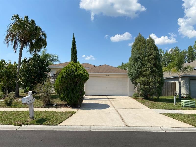 30817 LUHMAN COURT, Wesley Chapel, FL 33543 - MLS#: O5942917