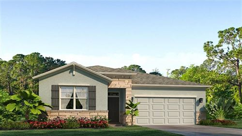 Main image for 13363 WATERLEAF GARDEN CIRCLE, RIVERVIEW, FL  33579. Photo 1 of 17
