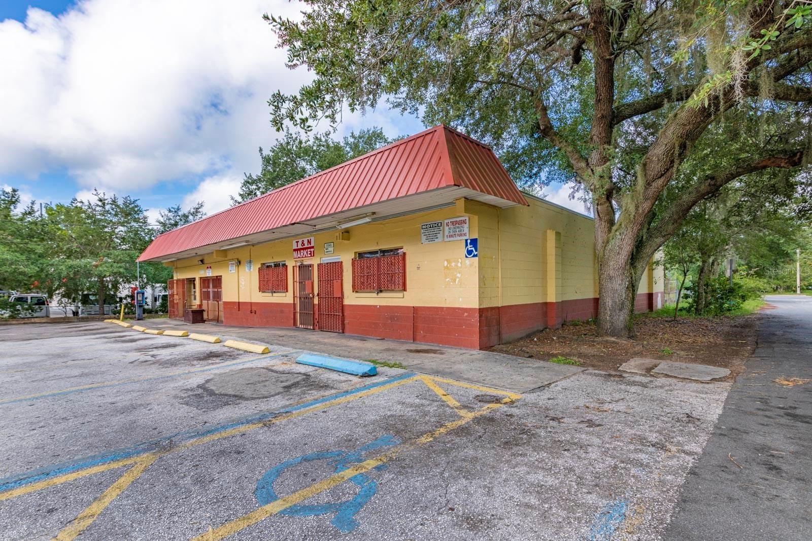 1345 N GRANDVIEW STREET, Mount Dora, FL 32757 - #: G5043931