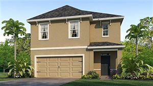 Main image for 3503 WINTERBERRY LANE, VALRICO,FL33594. Photo 1 of 18