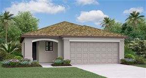 Main image for 5003 SABLE CHIME DRIVE, WIMAUMA, FL  33598. Photo 1 of 7