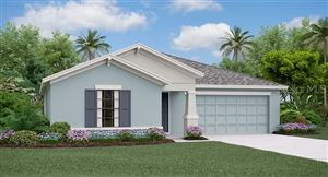Main image for 10507 CARLOWAY HILLS DRIVE, WIMAUMA, FL  33598. Photo 1 of 6