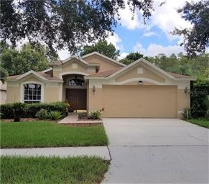 Photo of 19743 ELLENDALE DRIVE, LAND O LAKES, FL 34638 (MLS # T3195951)