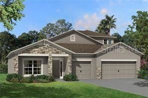 Photo of 31208 PALM SONG PLACE, WESLEY CHAPEL, FL 33545 (MLS # J917954)